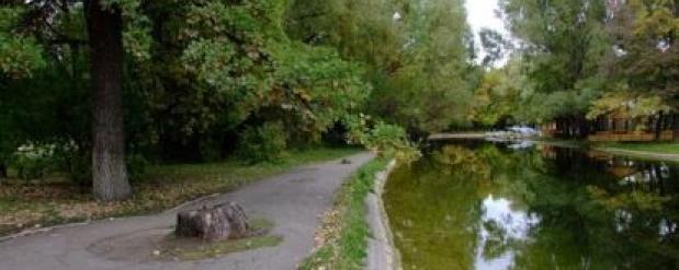 Самарцы могут посетить бесплатные тренировки в парке Гагарина