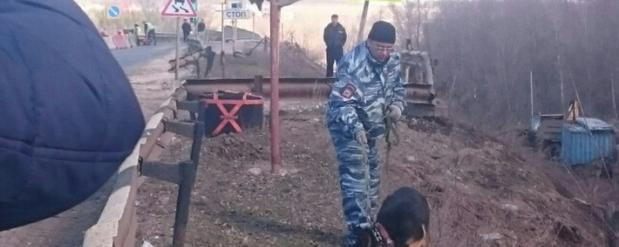В Самарской области на обочине дорог были найдены боевые гранаты